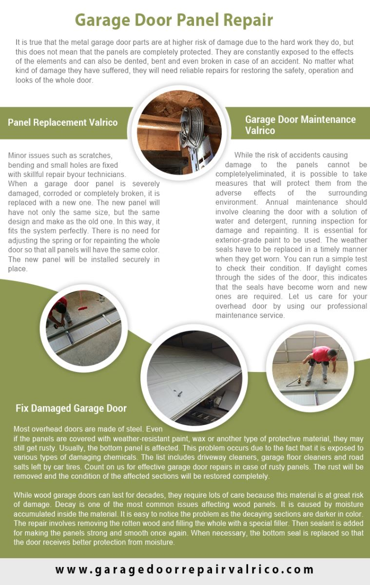 Garage Door Repair Valrico Infographic